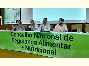 """Estado brasileiro precisa repensar conceito sobre o que é alimento"", diz conselheiro"