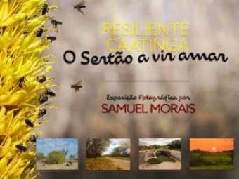 Caatinga será tema de exposição fotográfica em Juazeiro