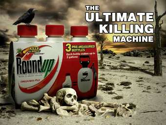 Dia da Terra: ambientalistas lutam por proibição de herbicida cancerígeno