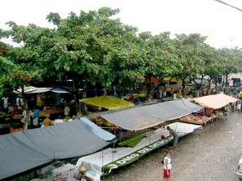 Adab e Polícia Militar agem com violência contra agricultores/as familiares em Várzea da Roça