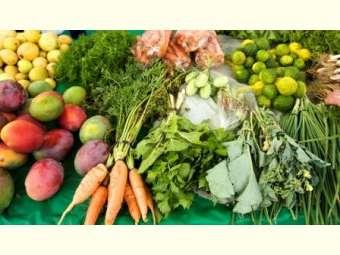 Redução no PAA contribui para desmonte da agricultura familiar