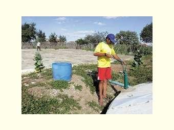 Sucesso sustentável no sertão ameniza os impactos da seca