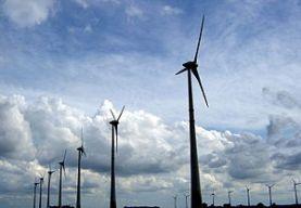 Empregados de parques eólicos aconselham camponeses a saírem de comunidades impactadas