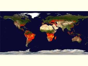 Intercâmbio entre famílias rurais de regiões semiáridas do planeta é caminho para superação dos desafios das mudanças climáticas