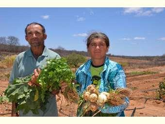 Seminário internacional na Embrapa Semiárido debate agricultura familiar
