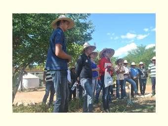 Intercâmbio em Juazeiro reúne agricultores/as acompanhados/as pela Asamil