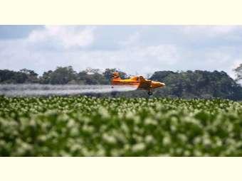 Governo concede em março mais 35 registros de agrotóxicos; já são 121 produtos liberados no ano