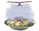 Campanha Permanente Contra os Agrotóxicos e Pela Vida será lançada em Juazeiro