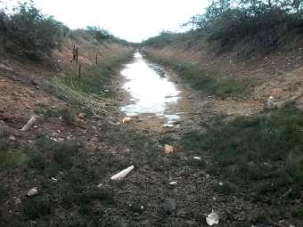 Pequenos agricultores/as  de Sobradinho sofrem com a falta d'água no canal da batateira