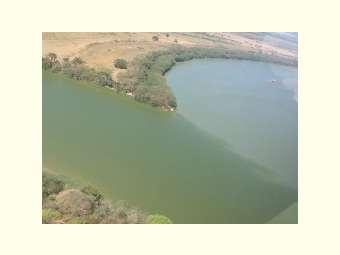 E o rio ficou verde