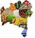 Política Nacional de Segurança Alimentar deve ser construída com participação da sociedade