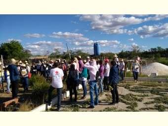 Delegação de escolas municipais do Piauí visitam experiência de Convivência com o semiárido baiano