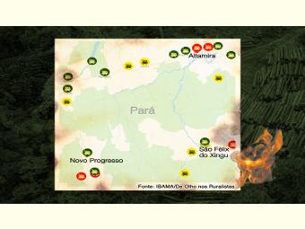 Mapa mostra, por município, os maiores multados por desmatamento nos últimos 25 anos