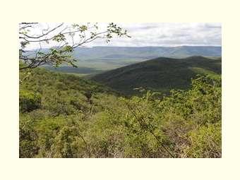 A experiência de comunidades tradicionais e o relacionamento intrínseco com a Caatinga