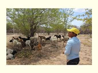 """""""Tem que se manter sempre firme aqui na nossa terra e lutar por ela"""", diz agricultora"""