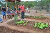 Estratégias de agricultores e  agricultoras do Semiárido  serão mapeadas a partir de 2013