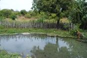 Estudo revela impacto negativo nos recursos hídricos do estado