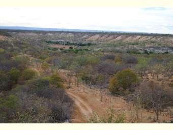 [Entrevista] O desconhecimento da Caatinga e o mito da seca