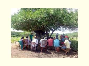 Manejo de Caprinos e Ovinos foi tema de atividade coletiva em Canudos