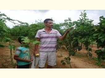 Família mantém viva a esperança de produzir e conviver com região semiárida
