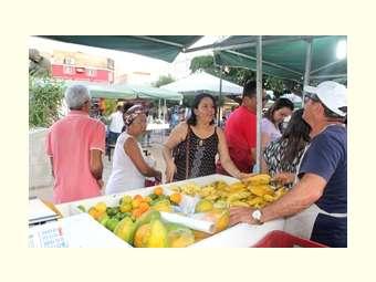 Juazeiro conta agora com Feira semanal de Orgânicos no centro da cidade