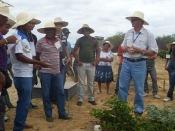 Participantes da Escola de Formação do Irpaa conhecem experimentos da Embrapa Semiárido