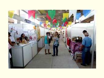 ExpoAgrifam: a maior feira da agricultura familiar e empreendimentos solidários da Bahia
