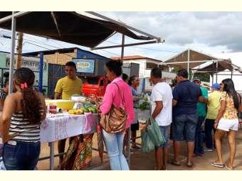 Feira agroecológica de Sento Sé contribui para escoamento da produção da agricultura familiar local