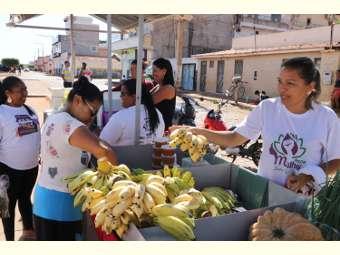 Feira Agroecológica de Sento Sé garante diversidade de produtos saudáveis
