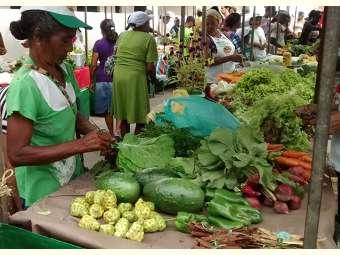 Feira agroecológica potencializa agricultura familiar em Serrinha