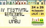 Uauá se prepara para o IV Festival do Umbu