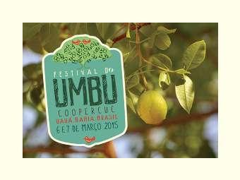 Últimos preparativos para a 7ª edição do Festival do Umbu em Uauá