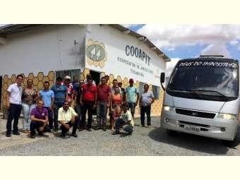 Integrantes do projeto Bahia Produtiva de Uauá visitam experiência de apicultura em Tucano - BA