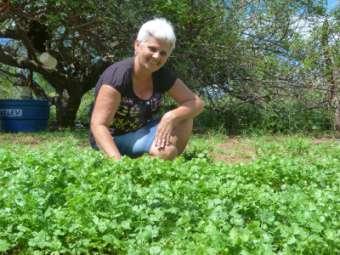 Serviço de Ater contribui para diversificar a produção de agricultores/as familiares em agrovilas de Curaçá