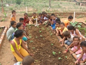Vídeo sobre Horta Pedagógica produzido pelo Irpaa é selecionado em Festival