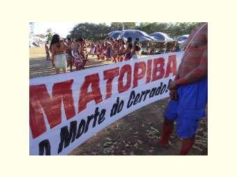 CARTA ABERTA MATOPIBA
