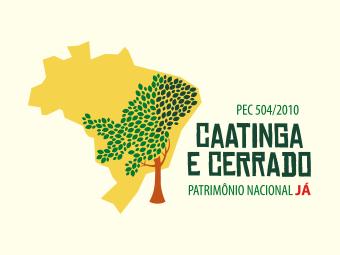 Petição pede transformação do Cerrado e da Caatinga em Patrimônio Nacional