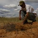 Comunidades revertem a desertificação