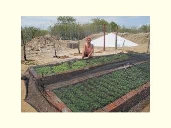 Histórico da Horticultura em Caititus se fortalece com a chegada do Projeto Mais Água