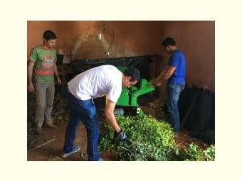 Estudantes do curso agronomia da Uneb, em Euclides da Cunha, participam de dia campo sobre o potencial forrageiro da caatinga