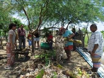 Famílias beneficiárias do Ater aprendem práticas para uma agricultura orgânica