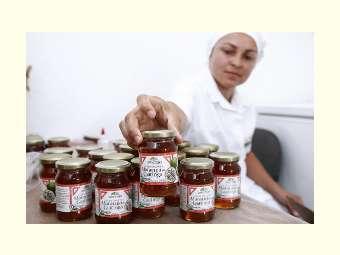 Visita de intercâmbio sobre empreendimentos da agricultura familiar é realizada na região de Juazeiro e Uauá, no Semiárido da Bahia
