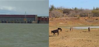 Em Sobradinho, comunidades sofrem com falta d'água ao lado do maior lago da América Latina