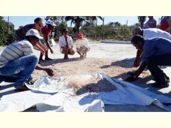 Oficinas despertam para a produção agroecológica com redução de custos no Semiárido