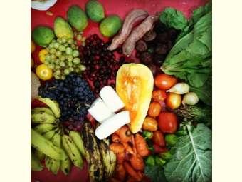 || Dia Mundial da Alimentação || Feiras orgânicas trazem benefícios para a vida da pessoas