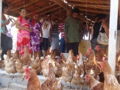 Intercâmbio  em Sobradinho reúne agricultores  de  quatro municípios baianos