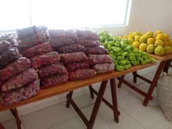 Agricultoras e agricultores familiares de Sento Sé comercializam alimentos sem agrotóxicos para programa governamental