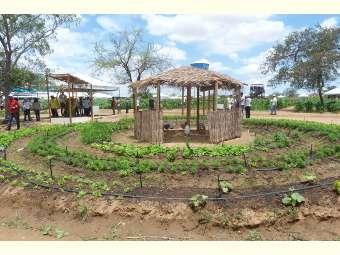Cuba realiza encontro de agroecologia com delegados de 20 países