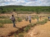Projeto Recaatingamento ajuda a combater desertificação no município de Canudos