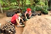 Agroecologia  é tema de curso para profissionais da Reforma Agrária no Semiárido